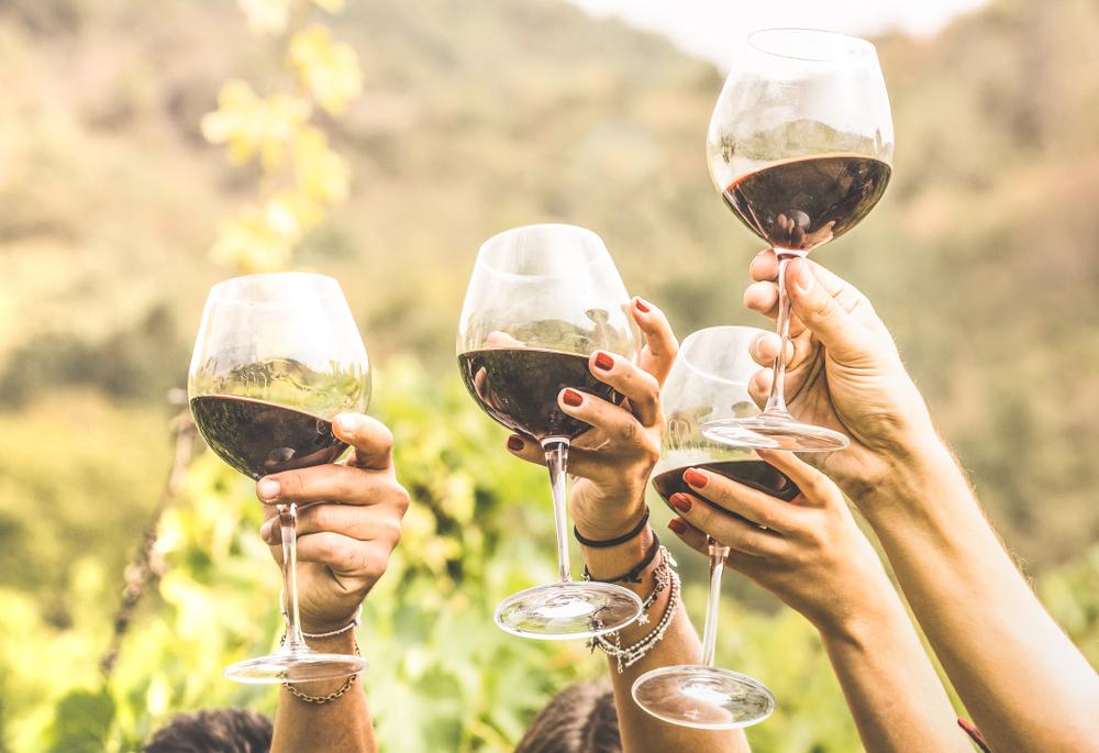 Weinprobe Pfalz mit Übernachtung