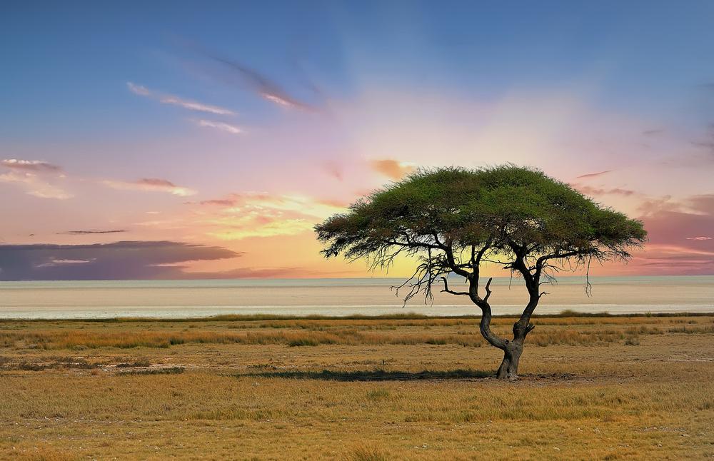 Faszinierendes Namibia: Zwischen europäischem Kolonialstil und wildem Afrika