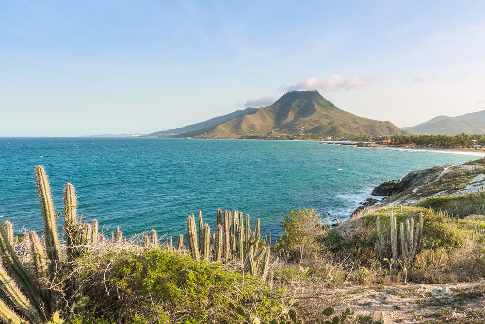 Flora und Fauna Isla Margarita